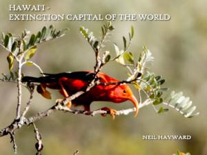 Hawaii talk